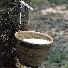 Natural Rubber Collection